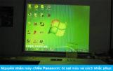 Nguyên nhân máy chiếu Panasonic bị sai màu và cách khắc phục